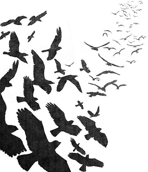 Flock of Birds in Flight by RedPine