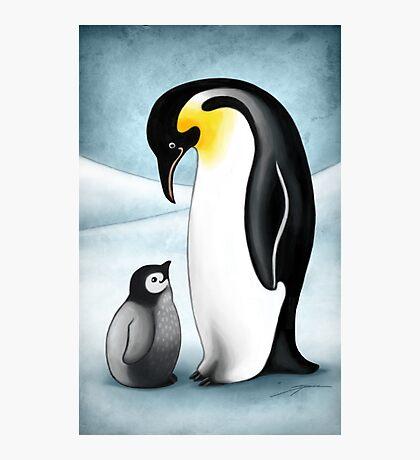 Penguins Photographic Print