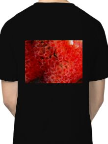 Red tube worms feeding Classic T-Shirt