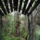 The Entrance to a Rainforest Garden by aussiebushstick