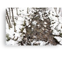 Snow Storm and a Mountain Stream Canvas Print