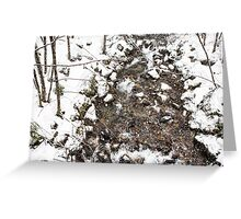 Snow Storm and a Mountain Stream Greeting Card