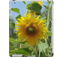 Sunflower 1 iPad Case/Skin