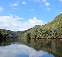 Pieman River - Tarkine wonderland by gaylene