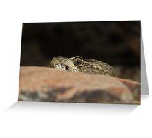 Enemy Fire - Black Tailed Rattlesnake Greeting Card