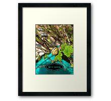 Yellow Grove Snail VRS2 Framed Print