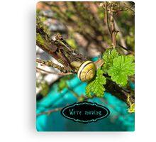 Yellow Grove Snail VRS2 Canvas Print