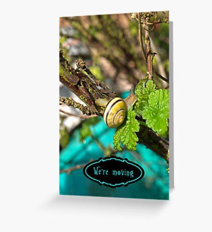 Yellow Grove Snail VRS2 Greeting Card