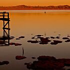 Lake Clifton at Sunrise by Mark  Nangle