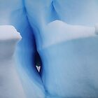 Antarctic Ice by DianaC