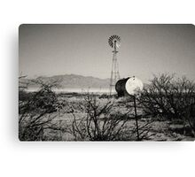 Desert, Arizona Canvas Print
