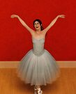 The Joy of Ballet by Liam Liberty