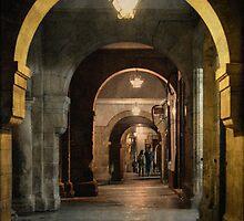A Rúa do Vilar á noite by rentedochan