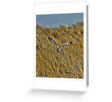 Northumberland Greeting Card