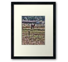 Northumberland Framed Print