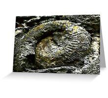 Dinton Castle Ammonite Greeting Card