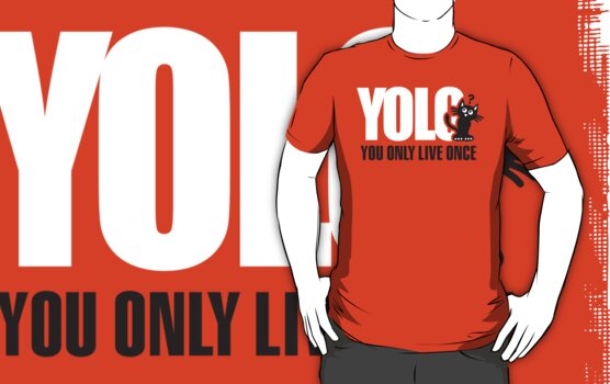 YOLO You Only Live Once by LaundryFactory