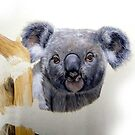 Koala Sketch by ZiyaEris