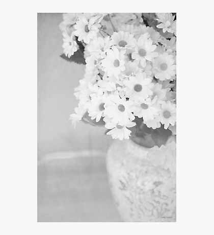 ...daisies.......black and white still life........... Photographic Print