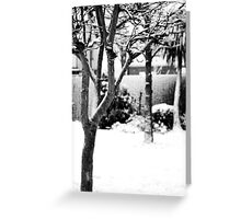 Snow Trees Greeting Card