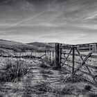 The Old Gate by Mark  Swindells