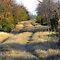 GRASSY TRAILS, ROADS etc, well established ones