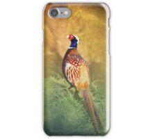 Male Pheasant iPhone/iPod Case iPhone Case/Skin