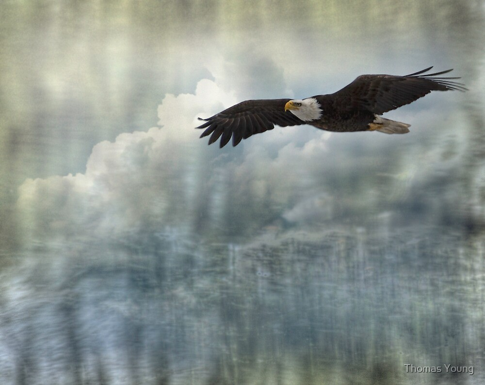 Into The Heavens by Thomas Young