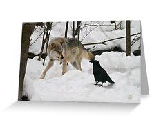 Wolf eats crow? Greeting Card