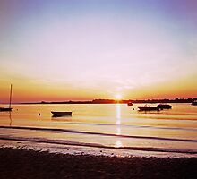 Plum Island Sound Sunrise by wolftinz