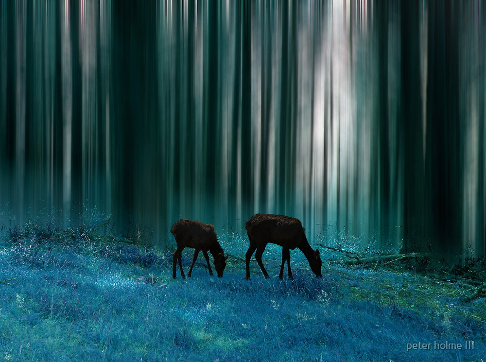 2737 by peter holme III