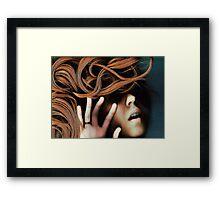 130527 Framed Print