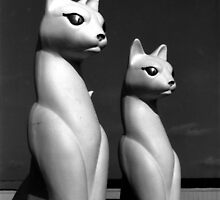 Space Cats by Jay Reed