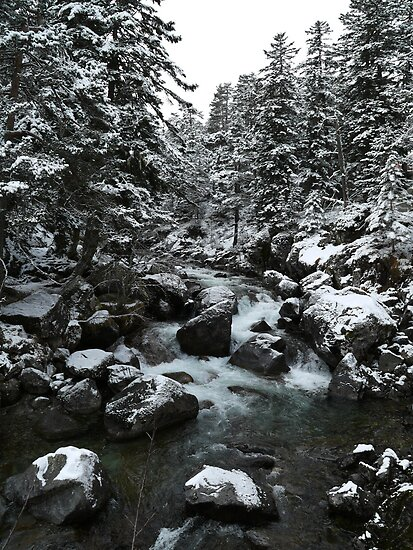 Snow-covered Waters by TinyHat
