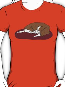 Sleeping Collie T-Shirt