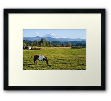 Paint Horse and Mount Rainier Framed Print