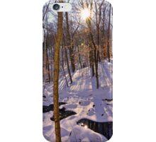 Winters Hidden Spot iPhone Case/Skin
