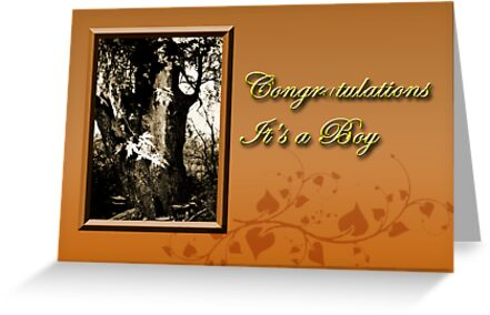 Congratulations It's A Boy Willow Tree by jkartlife
