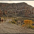 Havasu Trail by Stellina Giannitsi