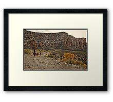 Havasu Trail Framed Print