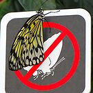 No Butterflies Allowed! by Sandra Fortier