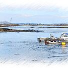 Ballydornan..Strangford Lough by oulgundog