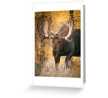 Bull Moose in the Aspens Greeting Card