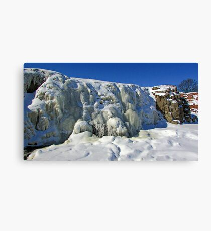 Frosty Waters Canvas Print
