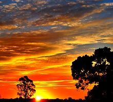 Sunset's Paintbrush by Lozzar Landscape