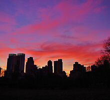 Central Park Sunset by Mistral Hill  Photography