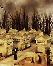 Ritual at The Cemetery by Liam Liberty