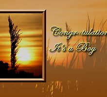 Congratulations It's A Boy Sunset by jkartlife