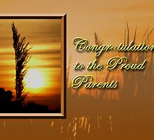 Congratulations To The Proud Parents Sunset by jkartlife