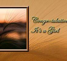 Congratulations It's A Girl Grass Sunset by jkartlife